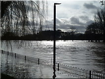 SO8453 : 2014 Worcester flooding by Chris Allen