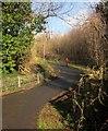 SX9066 : Bridleway to Barton tip by Derek Harper