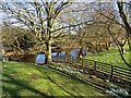 SE9884 : The River Derwent emerges under Ayton Bridge by Pauline E