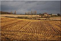 SK1409 : Field of stubble by N Chadwick