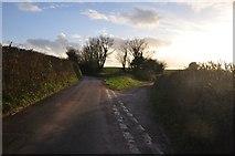SS9502 : Mid Devon : Country Lane by Lewis Clarke