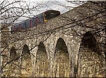 SX4561 : Train crossing Tavy Bridge by Derek Harper