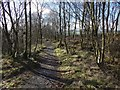 NS4079 : Footpath from Pappert Hill by Lairich Rig
