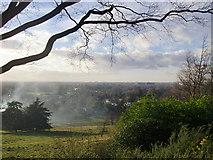 TQ1873 : View westward from King Henry's Mound, Richmond Park by Stefan Czapski