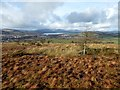 NS4180 : Boggy moorland view by Lairich Rig