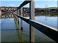 SY4691 : Flooded Melplash Showground by Nigel Mykura