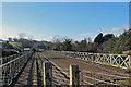 NZ8909 : Along the line by Pauline E