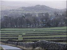 SK1482 : Dry stone walls near Castleton by Gareth James