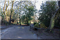 TQ2995 : Speed Hump, Oakwood Park, London, N14 by Christine Matthews