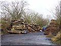 NZ0873 : Timber yard at Heugh by Oliver Dixon
