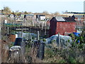 TF1019 : Allotments on South Fen Road, Bourne by Richard Humphrey