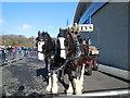 TQ3408 : Harveys Dray Horses by Paul Gillett