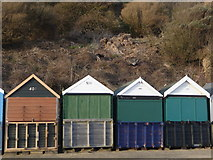 SZ1191 : Boscombe: beach huts and goats by Chris Downer