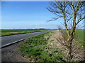 TL3177 : The road from Pidley to Old Hurst by Marathon