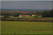 TF4571 : Manor Farm from Fordington Wood by Chris