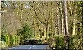 J3975 : The Glenmachan Road, Belfast - February 2014(2) by Albert Bridge