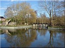 SU9947 : Weir, River Wey Navigation by Alan Hunt