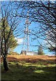 J3630 : View southeastwards towards the Drinnahilly Transmitter by Eric Jones