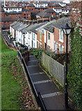 SX9192 : Napier Terrace by David P Howard