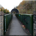 ST5971 : Hooded footbridge on the west side of Bath Road, Bristol by Jaggery