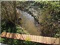 TL9443 : Bricks for bridge, Round Maple by Hamish Griffin
