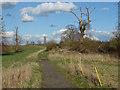 TQ0350 : Clandon Park estate by Alan Hunt