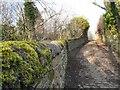 SJ9594 : Path to Osborne Road by Gerald England