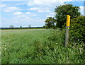 SK7823 : Footpath marker on the edge of a field by Mat Fascione