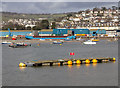 SX9372 : Mooring pontoon off The Point, Teignmouth by David P Howard