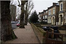TQ3386 : Capital Ring on Cazenove Road by Ian S