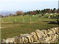 NZ1553 : Cemetery on Pontop Pike Lane, Dipton by Oliver Dixon