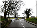 TG2300 : Norwich Road, Stoke Holy Cross by Adrian Cable