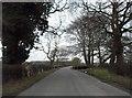 SJ7669 : Goostrey Lane by Anthony Parkes