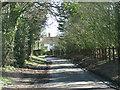 TM1096 : Guiler's Lane past Guiler's Farm by Evelyn Simak