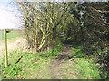 TM1095 : Bridleway off Potter's Lane by Evelyn Simak