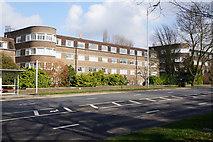 TQ2688 : Flats On Lyttelton Road by Ian S