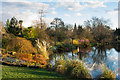 TQ3431 : Mansion Pond, Wakehurst Place by Ian Capper