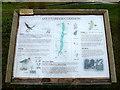 TM2499 : Shotesham Common Information Board by Geographer