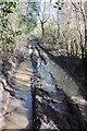 ST9499 : Muddy Macmillan Way by Philip Halling