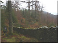 SD3493 : 'Taking a Wall for a Walk', Grizedale Forest by Karl and Ali