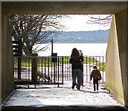 TA0225 : Country park underpass, Hessle by Paul Harrop