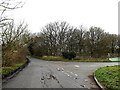 TG2900 : Wellbeck Road, Bergh Apton by Adrian Cable