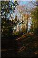 TQ3363 : Conduit Lane, Coombe Wood, Croydon by Christopher Hilton