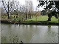 SP2965 : Floodmeadow, River Avon by Emscote Gardens, Warwick 2014, February 26, 13:44 by Robin Stott