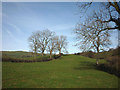SD5296 : Pastureland near Burton House by Karl and Ali