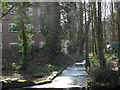 TL1406 : Abbey Mill bypass cascade: top by Stephen Craven