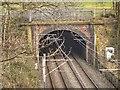 SD8203 : Heaton Park Tunnel by David Dixon