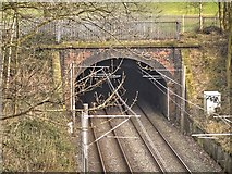 SD8203 : Heaton Park Tunnel by David Dixon