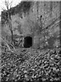 NT8554 : Stables And Courtyard Remains Below Blackadder House by James T M Towill