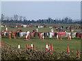 TL2575 : Go Kart track near Huntingdon by Richard Humphrey